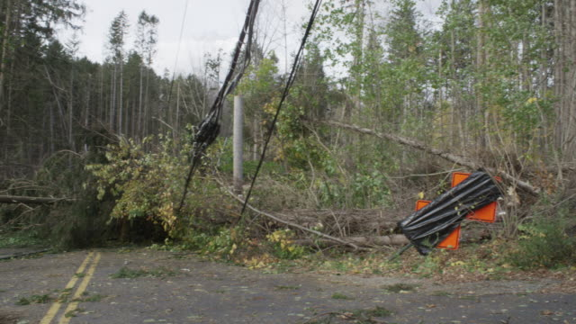 ws pan shot of uprooted trees downed on power lines and closed road caused by superstorm sandy / north castle, new york, united states - power cut stock videos & royalty-free footage