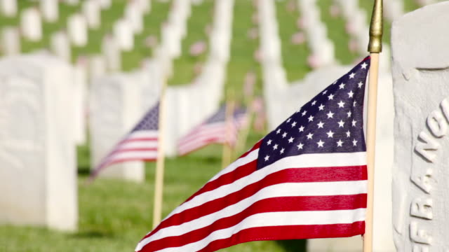 cu shot of us flags on memorial day at veterans cemetery in / los angeles, california, united states - us memorial day stock videos & royalty-free footage