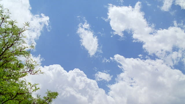 ws shot of various cloud formations against blue sky - 晴れている点の映像素材/bロール