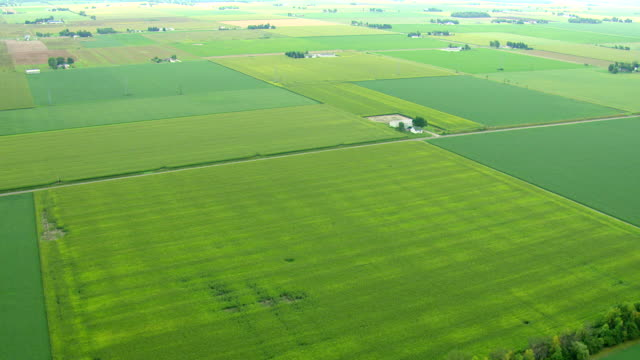 vidéos et rushes de ws aerial shot of various farms of different colors in saginaw county / michigan, united state - patchwork landscape
