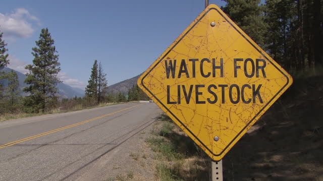 CU Shot of Watch for Livestock yellow road sign on Alaska Highway / Yukon, Canada