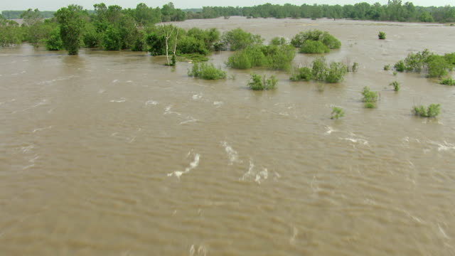 MS AERIAL TU Shot of water and trees in Mississippi River in Bolivar County / Mississippi, United States