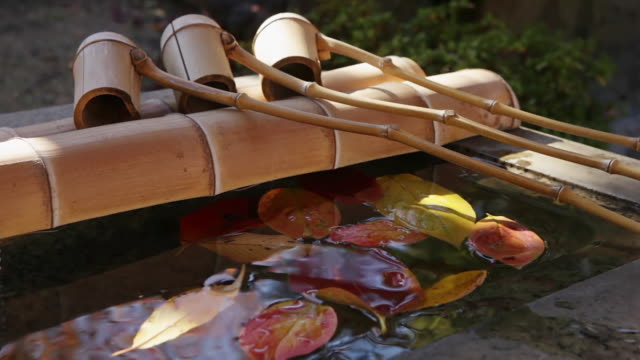 MS Shot of Water basin and dippers in autumn at Jyurin ji Temple in Nakaikegami district