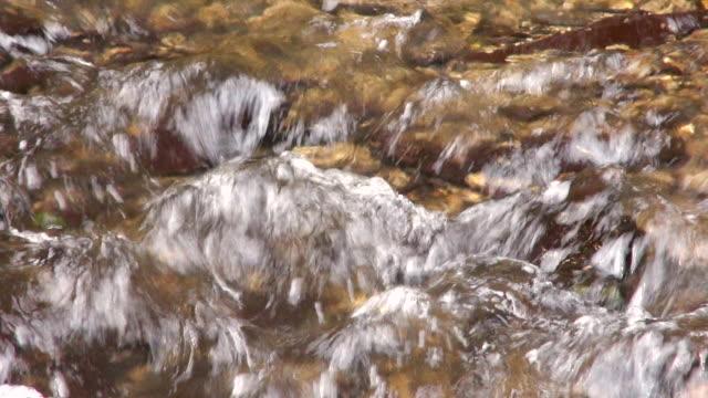 ecu shot of water flowing through forest creek / saarburg, rhineland-palatinate, germany - saarburg stock-videos und b-roll-filmmaterial