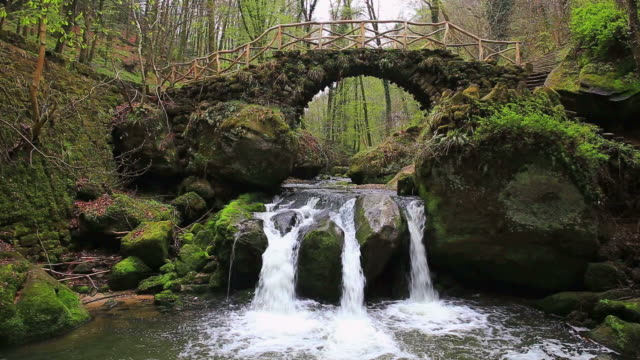 MS Shot of waterfall with stonebridge in forest / Schiessentumpel, Mullerthal, Luxembourg