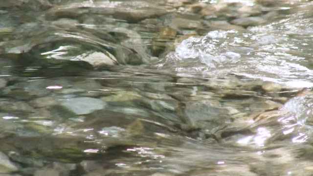 CU Shot of waters of mountain brook flowing among stones at Allgau Alps / Oberstdorf, Bavaria, Germany