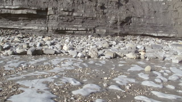 ms tu slo mo shot of wave cut platform covering with ammonites graveyard to cliffs of alternating limestone and clay strata / newcastle emlyn, ceredigion, united kingdom - 石灰岩点の映像素材/bロール