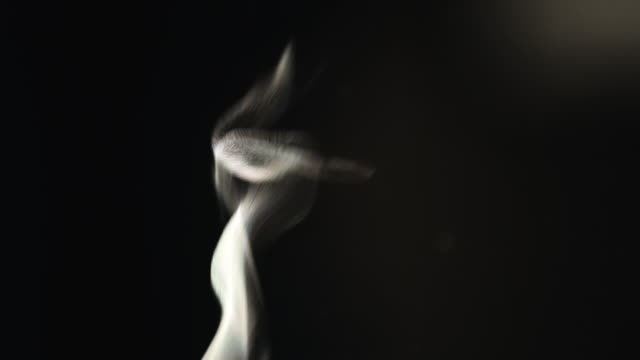cu shot of white steam backlit on black back side / endicott, new york, united states  - black background stock videos & royalty-free footage