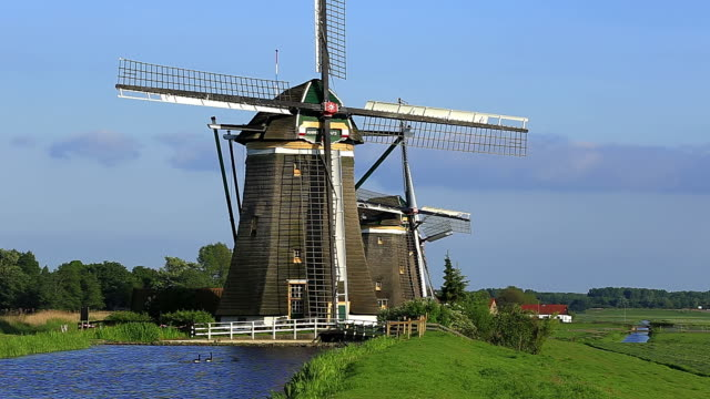 ws shot of windmills near leidschendam with duck swimming in small pond / south holland, netherlands - south holland stock videos and b-roll footage