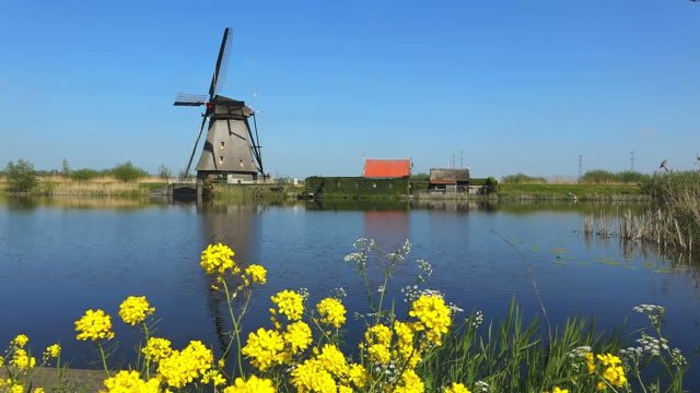 ws shot of windmills of kinderdijk at unesco world heritage site / south holland, netherlands - south holland stock videos and b-roll footage