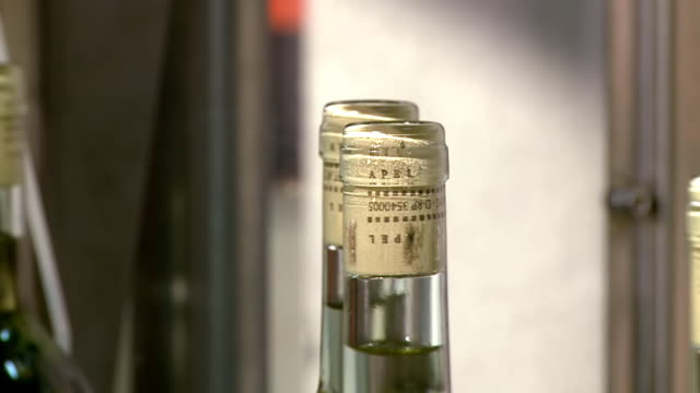 stockvideo's en b-roll-footage met cu shot of wine bottling in vinery / nittel, moselle,  rhineland palatinate, germany - middelgrote groep dingen