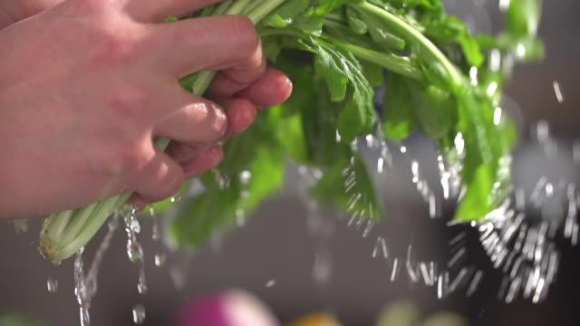 CU SLO MO TU Shot of woman hands washing vegetable  / Seoul, South Korea