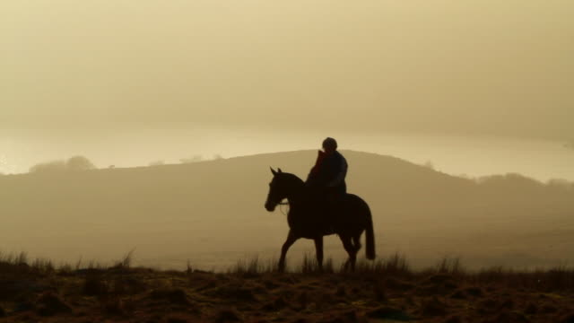 vídeos de stock e filmes b-roll de ms shot of woman silhouetted riding horse from with foggy skies and hills / dartmoor, england, united kingdom - cavalgar