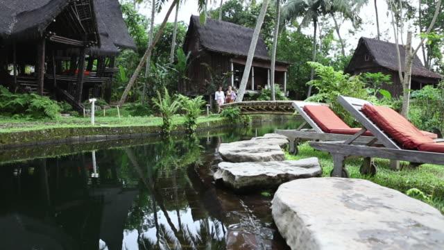 ws shot of woman walking on bridge over pond / ubud, bali, indonesia - 溜水点の映像素材/bロール