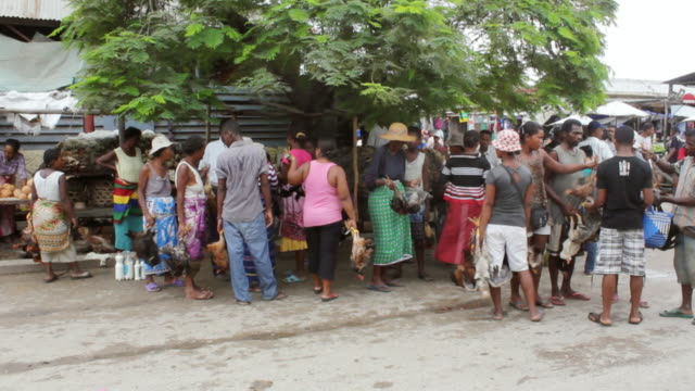 ms pan shot of women selling chickens in market / tolagnaro, madagascar - large group of animals点の映像素材/bロール