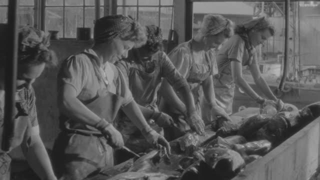 vídeos de stock e filmes b-roll de ms pov shot of women's cutting fish  - amanhar o peixe