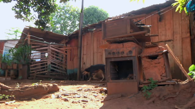 MS Shot of wooden house in village and dog passing by / Serra Pelada, Para, Brazil