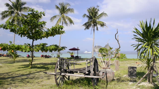 ws shot of wooden ox cart under palm trees and boat passing by at beach / ko hai, krabi, thailand - ox cart stock videos & royalty-free footage