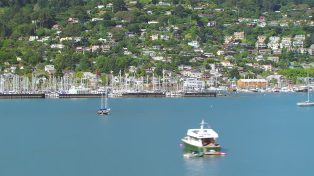 80 Top Sausalito Video Clips & Footage - Getty Images