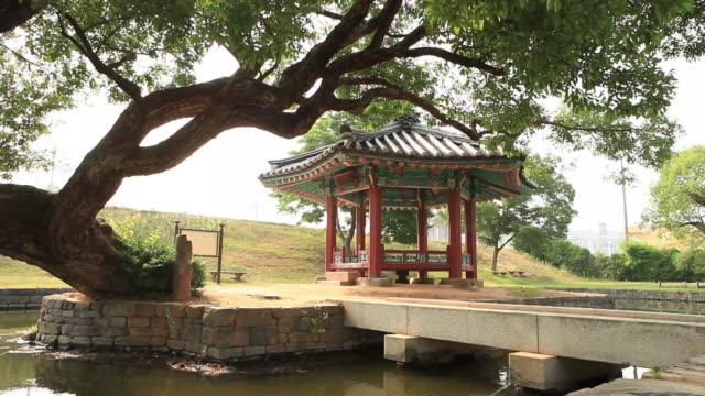 shot of yeohajeong gazebo and a old tree - gazebo stock videos and b-roll footage