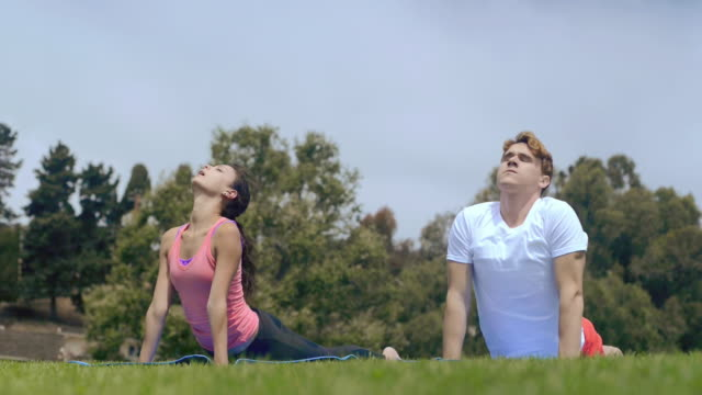 ms shot of young athletic couple doing yoga poses at park / pacific palisades, california, united states  - tracksuit bottoms stock videos & royalty-free footage