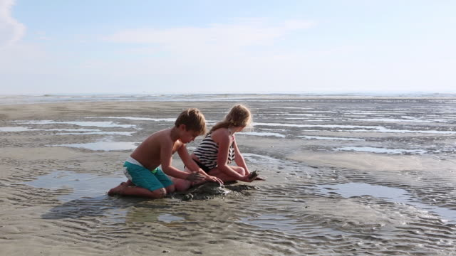 MS Shot of young boy and girl playing at beach / St. Simons Island, Georgia, United States