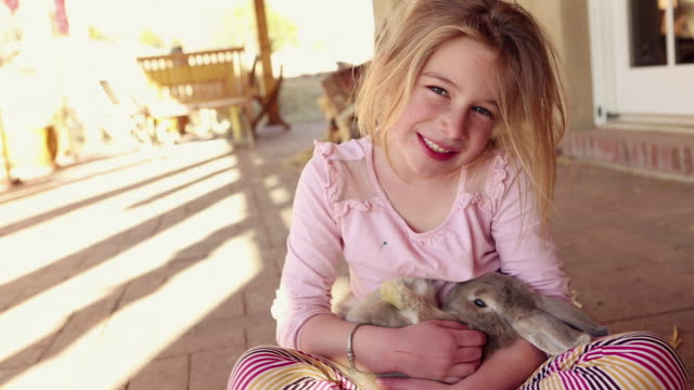 vidéos et rushes de ms shot of young girl and her pet rabbit / lamy, new mexico, united states - animaux de compagnie