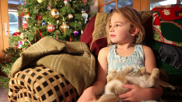 cu shot of young girl holding her two bunnies christmas morning / lamy, new mexico, united states - lamy new mexico stock videos & royalty-free footage