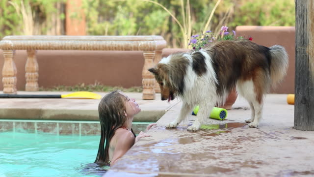 MS Shot of young girl in pool splashing water at her dog / Lamy, New Mexico, United States