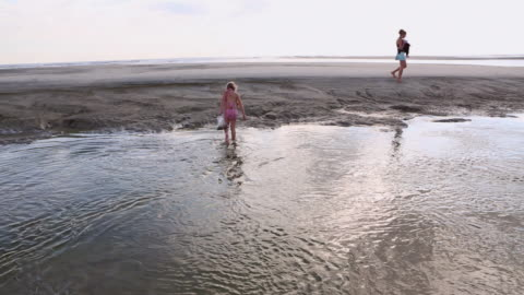 ws tu shot of young girl looking for shells at beach / st. simons island, georgia, united states - walking in water stock videos & royalty-free footage