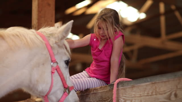 ms shot of young girl with her horse / lamy, new mexico, united states - lamy new mexico stock videos and b-roll footage
