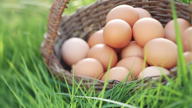 ms shot of young ladies hand takes egg from rustic basket / london, united kingdom  - basket stock videos & royalty-free footage