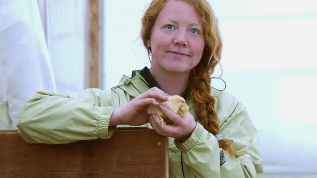 CU SLO MO Shot of Young red hair woman smiling with two baby chicks in hand / Chatham, Michigan, United States