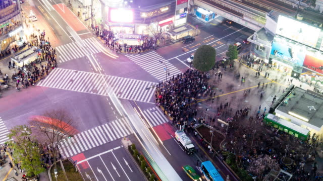 WS T/L HA Shot over city street crossing at night / Shibuya ku, Tokyo, Japan
