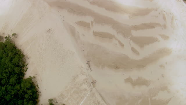ws aerial ds shot over dune du pilat / aquitaine, france - dune of pilat stock videos and b-roll footage