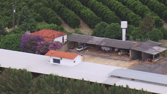 ms aerial shot over granary near orange cultivation / minas gerais, brazil - granary stock videos & royalty-free footage