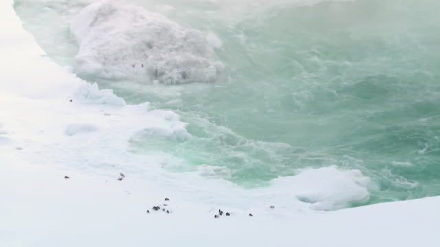 ws shot over niagara river below falls in winter / niagara falls, ontario, canada - fluss niagara river stock-videos und b-roll-filmmaterial