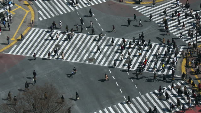 MS HA Shot over people crossing street at daytime / Shibuya ku, Tokyo, Japan