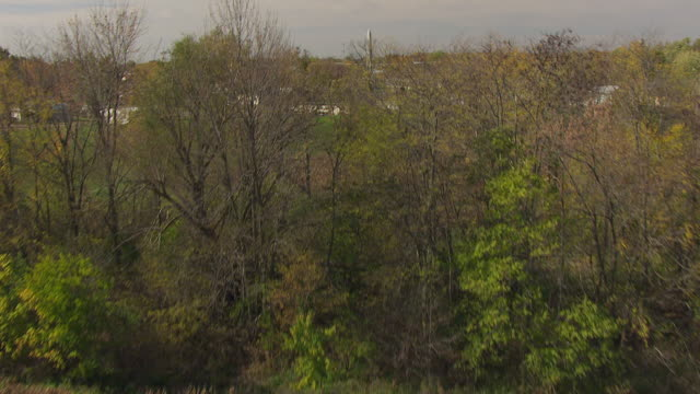 ws tu aerial shot over trees and neighborhood to reveal fort recovery / dayton, ohio, united states - ohio stock videos & royalty-free footage