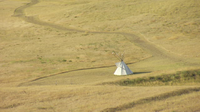 MS AERIAL Shot over Ulm Pushkin teepee in field of Cascade County / Montana, United States