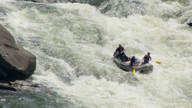 ms ts aerial shot over white water rafters maneuver through lost paddle rapids of gauley river / west virginia, united states - rafting stock videos and b-roll footage