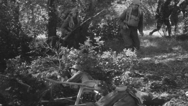 WS Shot through forest as soldiers slowly advance forward to dead soldiers