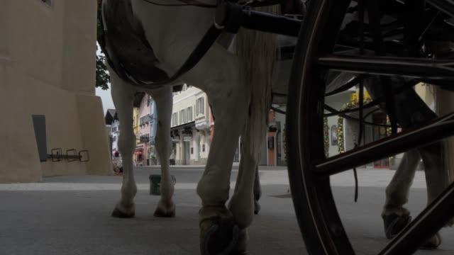vidéos et rushes de shot through legs of horses and colourful buildings in vorderstadt, kitzbuhel, tyrol, austrian alps, austria, europe - voiture hippomobile
