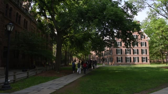 shots in the area of yale university referred to as the old campus in new haven, ct shot june 12, 2015 shots: wide shots of tour groups walking... - ivy league university stock videos & royalty-free footage