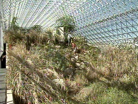 shots inside the biosphere 2 including various landscapes and plantlife may 1991 - shrubland stock videos & royalty-free footage