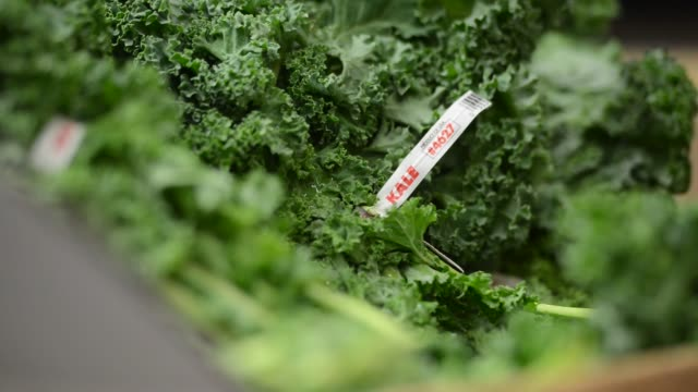 shots of bunches of kale in a supermarket cooler in princeton illinois - kale stock videos and b-roll footage