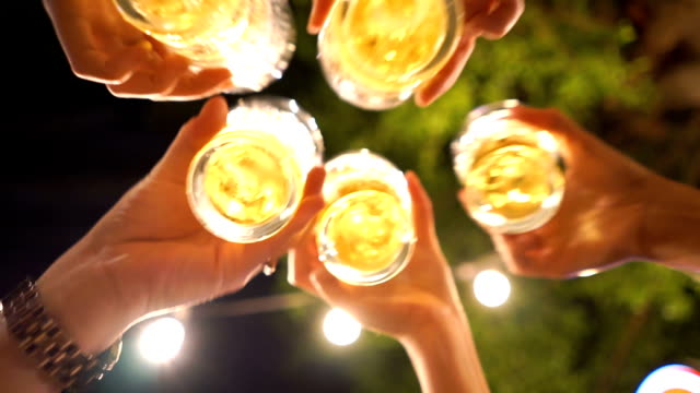 4 shots of cheers! happy beer party - celebratory toast stock videos & royalty-free footage
