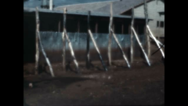 Shots of Kibbutz Maayan Baruch in the Upper Galilee from an archival home movie just after the Israel War of Independence in 1948