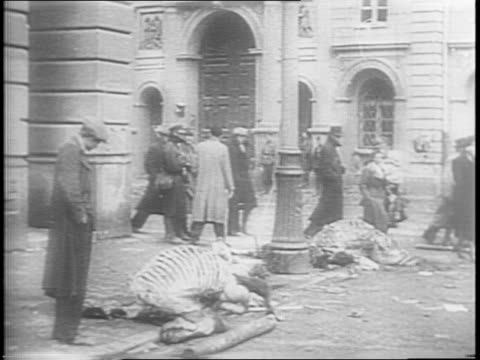 shots of people stripping dead horses for meat / shots of horse skeletal remains in the street / shot of an old man who is helped down the street by... - 1944 bildbanksvideor och videomaterial från bakom kulisserna