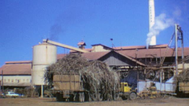 shots of sugarcane mill / trucks with sugarcane / milling raw sugar / c h sugar mill kekaha on august 01 1975 in kauai hawaii - kauai stock videos & royalty-free footage